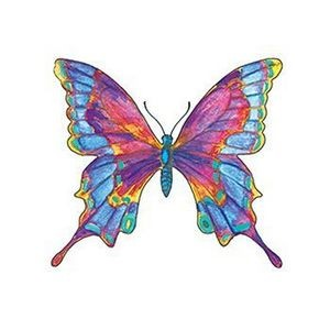 Multicolored Butterfly Temporary Tattoo