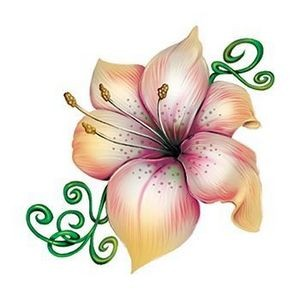 Lily Flower and Vine Temporary Tattoo
